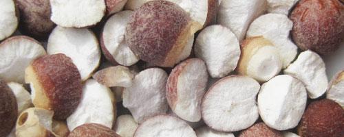 graines d' euryale