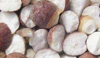 Graine d'Euryale (qian shi) – 茨 實
