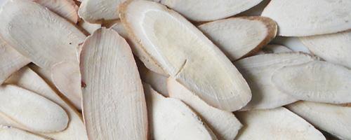 racine de pivoine blanche