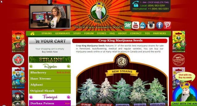 canadian seed bank crop king seeds