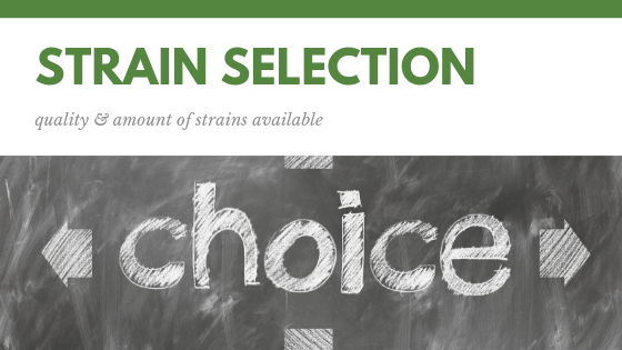 strains selection choices of cannabis seeds