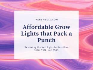 cheap grow lights