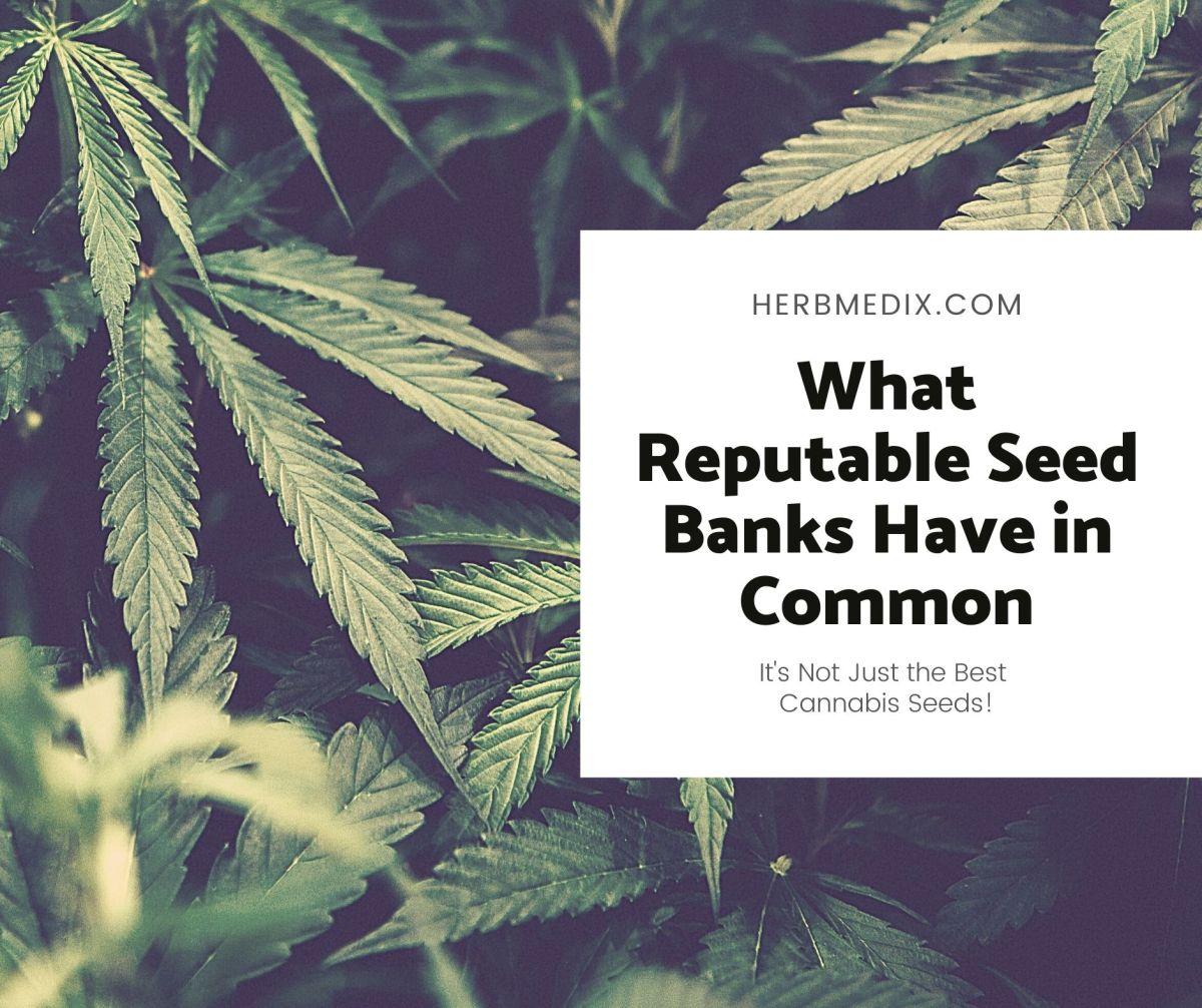 reputable seed banks