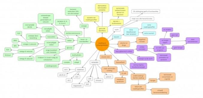 voeding en leerprestaties (2)