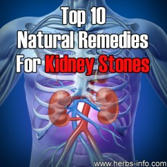 Top 10 Natural Remedies For Kidney Stones