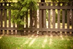 Keep your wood fence looking great all season long!