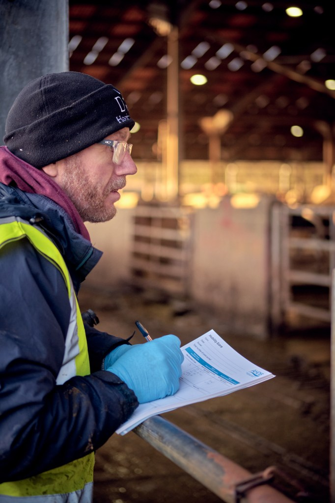 Herd health assessment and advice
