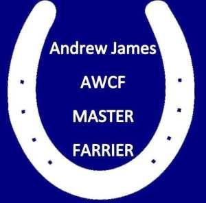 Andrew James AWCF Master Farrier