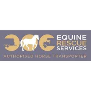 Bryndau Equine Transport Ltd