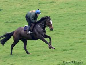 Lucy Turner riding Cheltenham bound Pentiffic