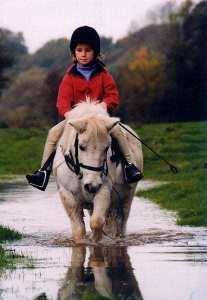 Have your photo featured on Hereford Equestrian