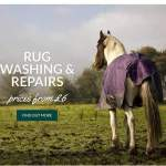 Special Offers at Horse Boutique