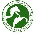 Ledbury Vet Physio Helps Win Bronze for Britain at World Equestrian Games