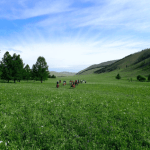 Ride to Freedom – How I reconnected on the Mongolian Steppe by Katriona Shrives