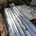 Steel roofing panels