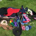 Lots of Pony items! Great start up kit