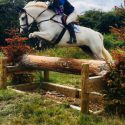 Exceptionally talented and stunning Class 1 Connemara