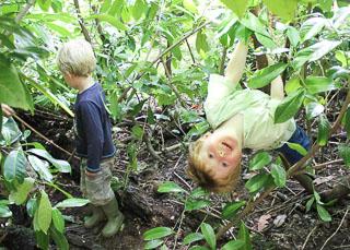 Exploring the natural environment