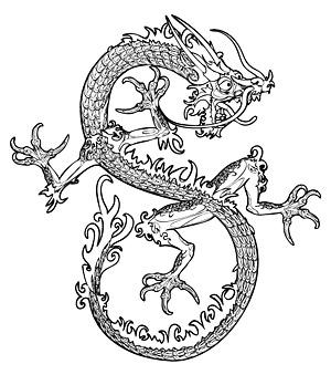 Dragon chinois vecteur-3 Free Download
