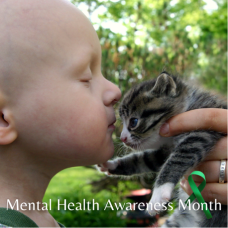 Child with cancer touching noises with a kitten