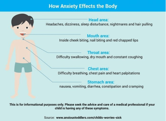 How anxiety affects the body
