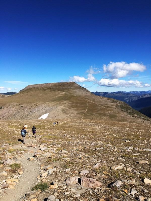 Burroughs Mountain Trail
