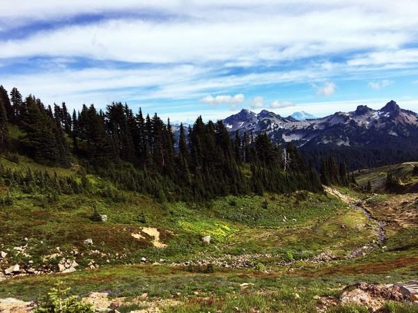Mt. Rainier - Paradise