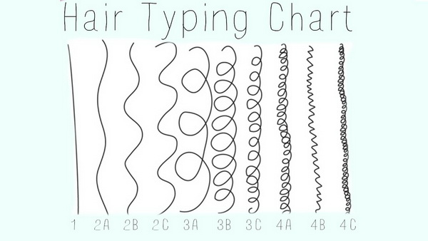 Image result for hair texture chart