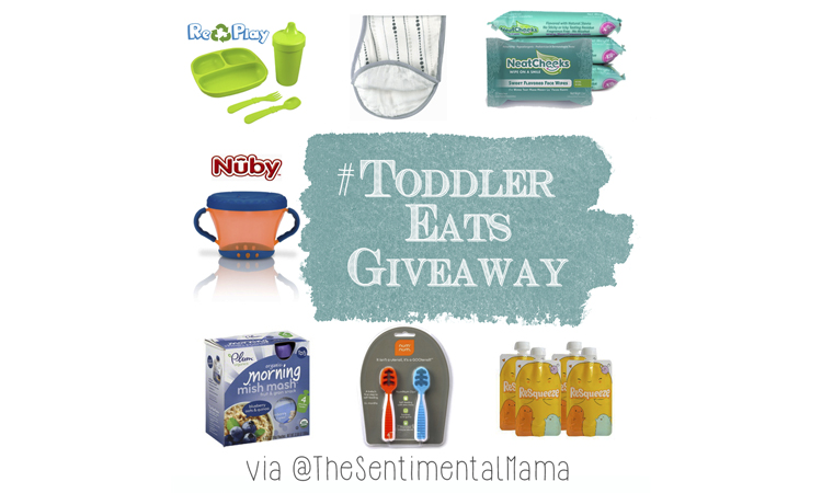 Toddler Eats Giveaway