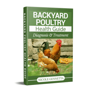 DIY Chicken First Aid Kit » Heritage Acres Market LLC