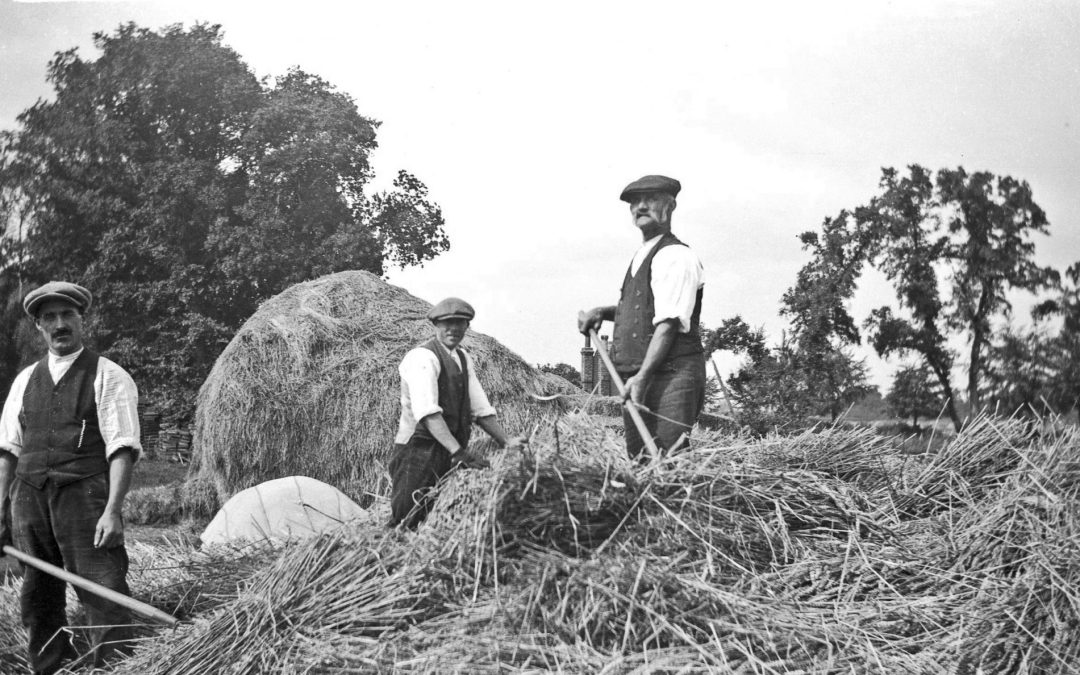 Farming Life – 1920's