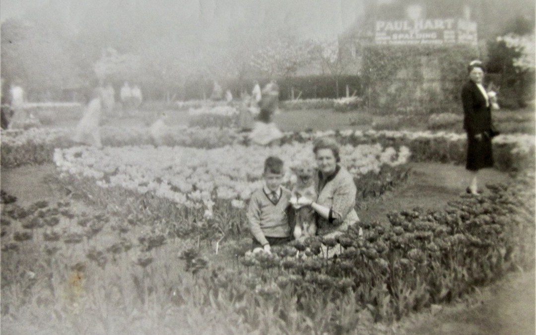 Paul Hart  gardens  c 1960