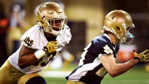 Blue Gold Game Preview: The Wide Receivers
