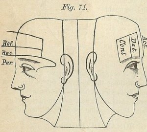 image of 2 faces, line drawing from an old book