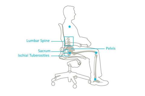 ergonomic chair design guidelines graco high 4 in 1 the kinematics of sitting research herman miller a graphic showing how aeron holds pelvis its natural position