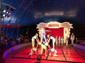 2018-zirkusprojekt-098