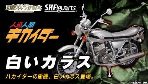 bnr_SHF_ShiroiKarasu_B01_fix