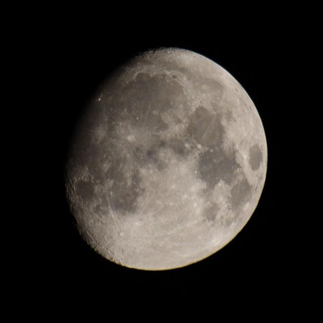 Nearly full moon on 11/11/2016