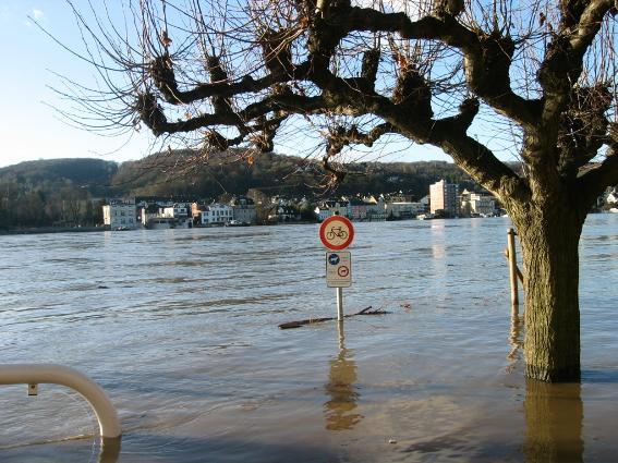 Rheinhochwasser 2004 auf der B42 in Erpel