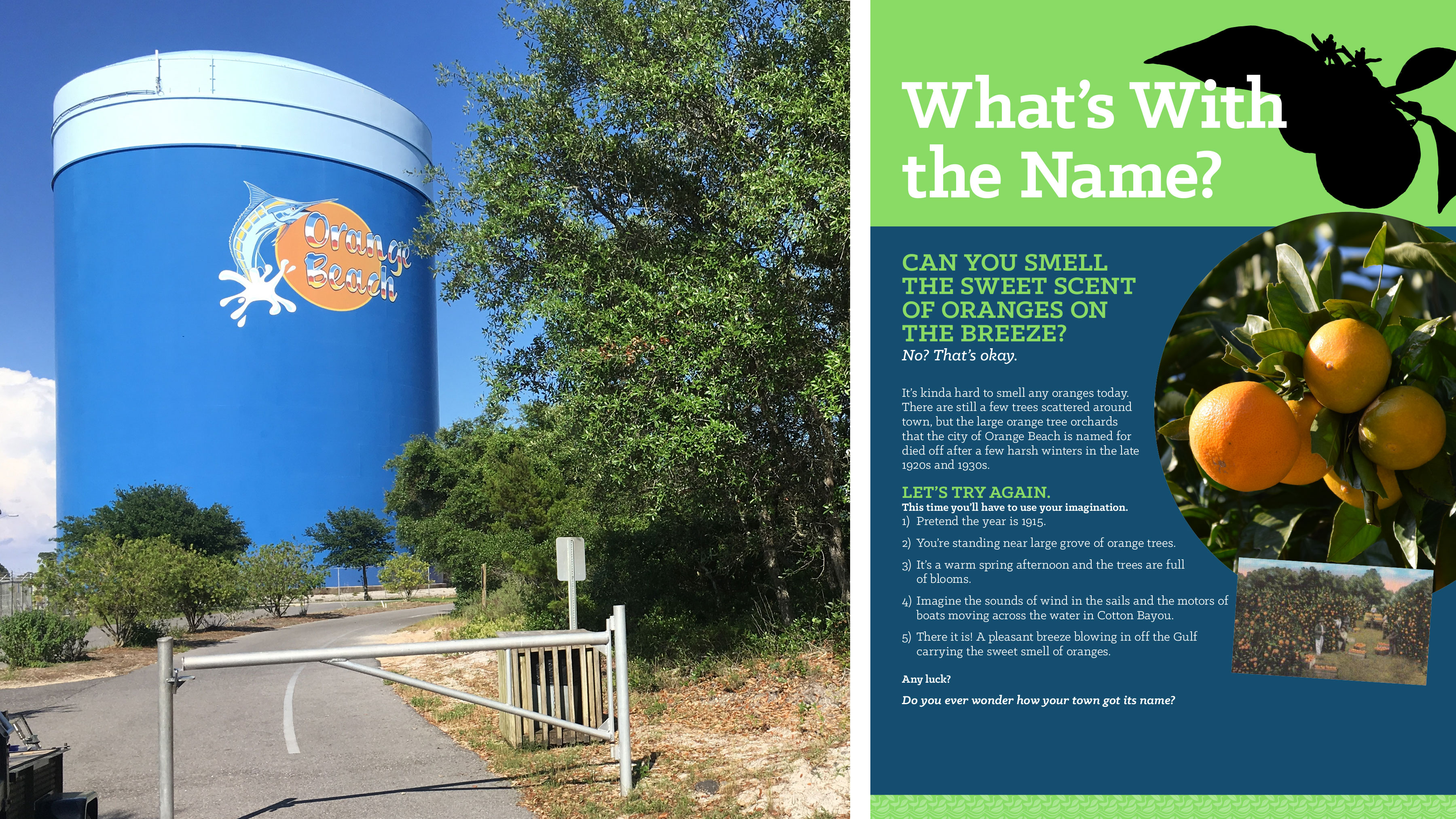 Orange Beach Interpretive Sign