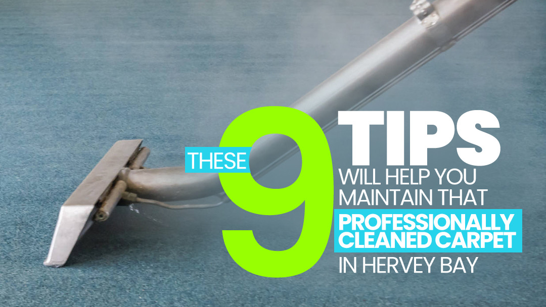 9 tips to maintain your professionally cleaned carpets in Hervey Bay