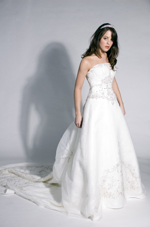 Bride in beautiful wedding gown