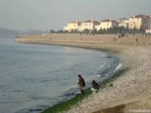 Kenaikan Muka Laut 10 Milimeter per Tahun sea shore 10