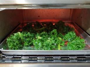 Membuat Kale Chips, Dari Benih Sampai Piring Kale Chips Panggang Oven 1
