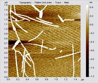 AFM Image Without Vibration Isolation