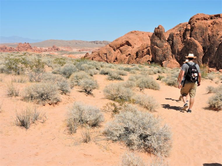 Hiking in the Valley of Fire