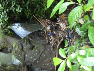 Trash in waterfall in Bali