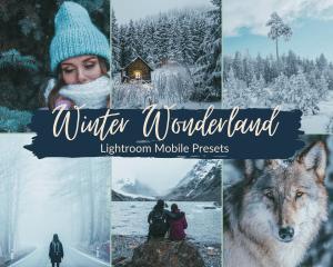 Winter Wonderland Preset Lightroom Mobile
