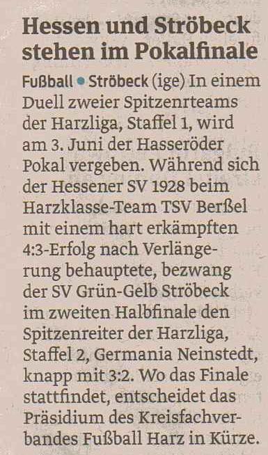 Pokalfinale gegen Ströbeck VS 29.03.16