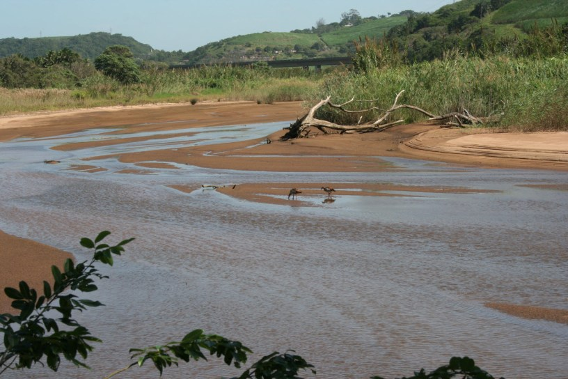 Mpanbanyoni River floodplain